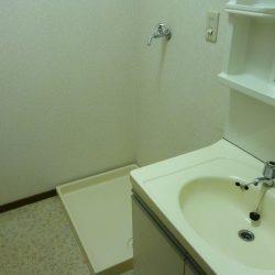 室内洗濯機置場 他のお部屋の写真となります。